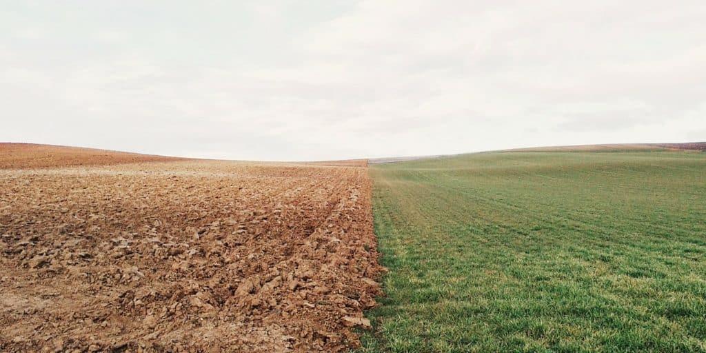 Land Banking Image