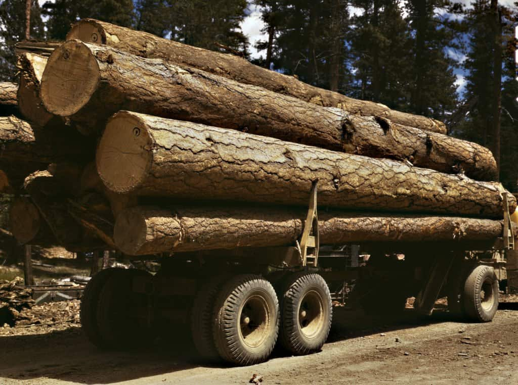 Truck_load_of_ponderosa_pine,_Edward_Hines_Lumber_Co,_operations_in_Malheur_National_Forest,_Grant_County,_Oregon,_July_1942