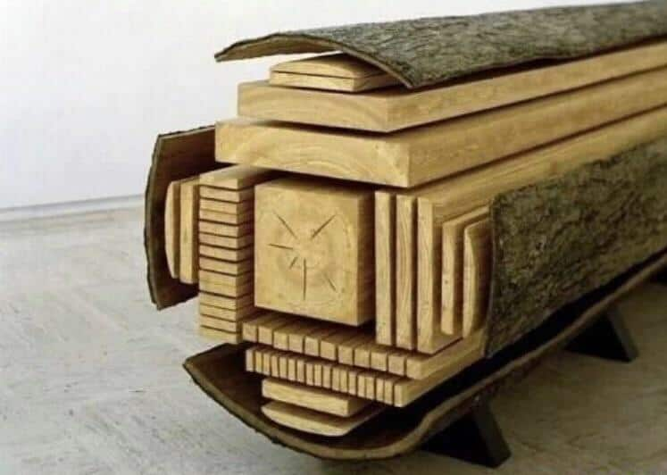 how trees are cut