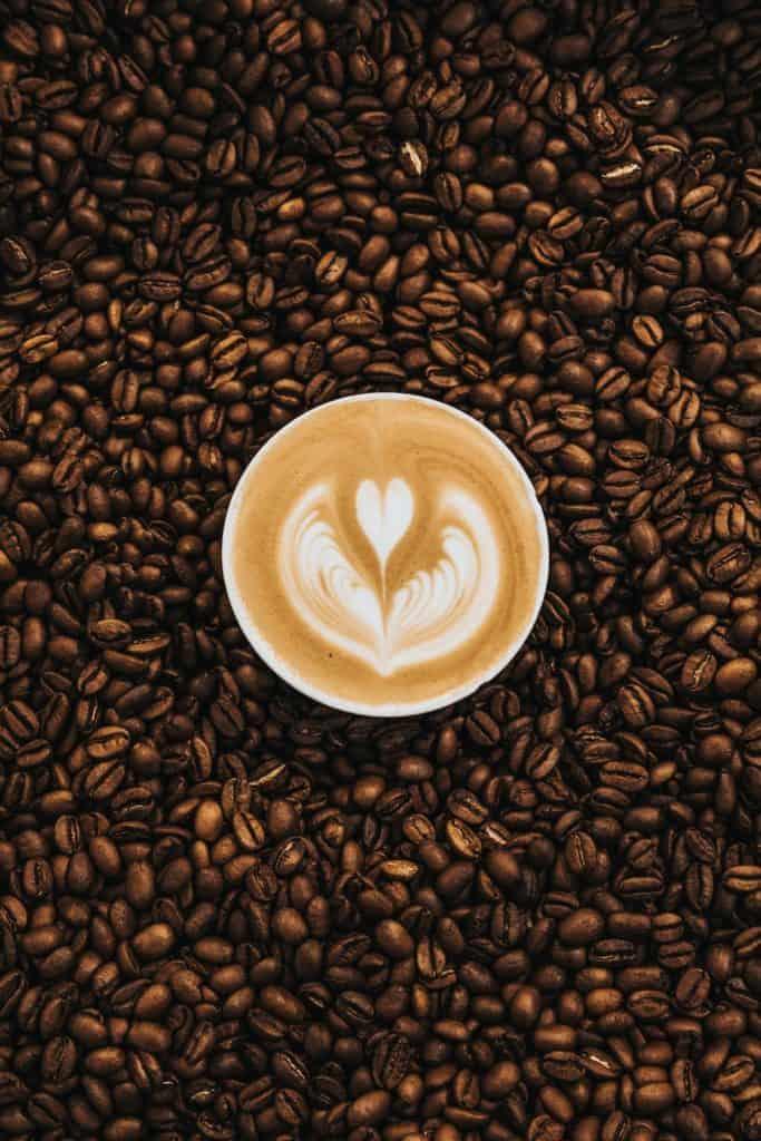 invest in coffee farm
