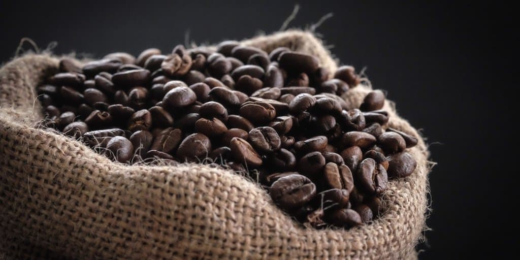 investing in panama coffee farms