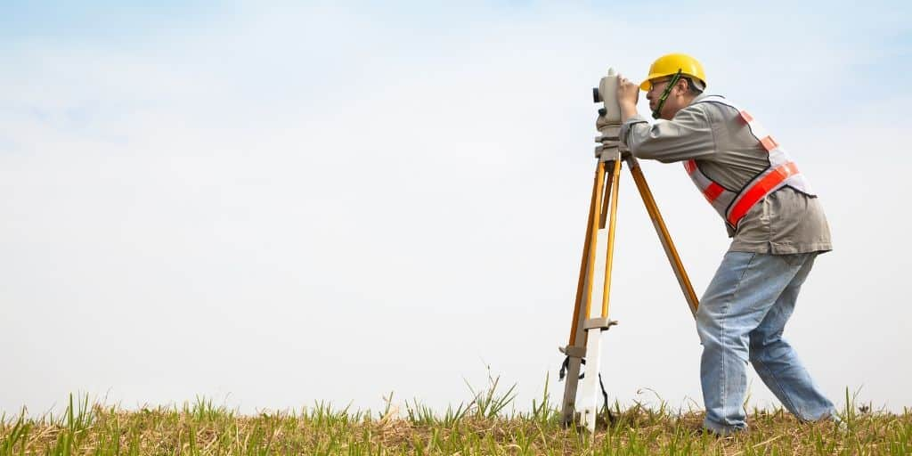 what is a surveyor