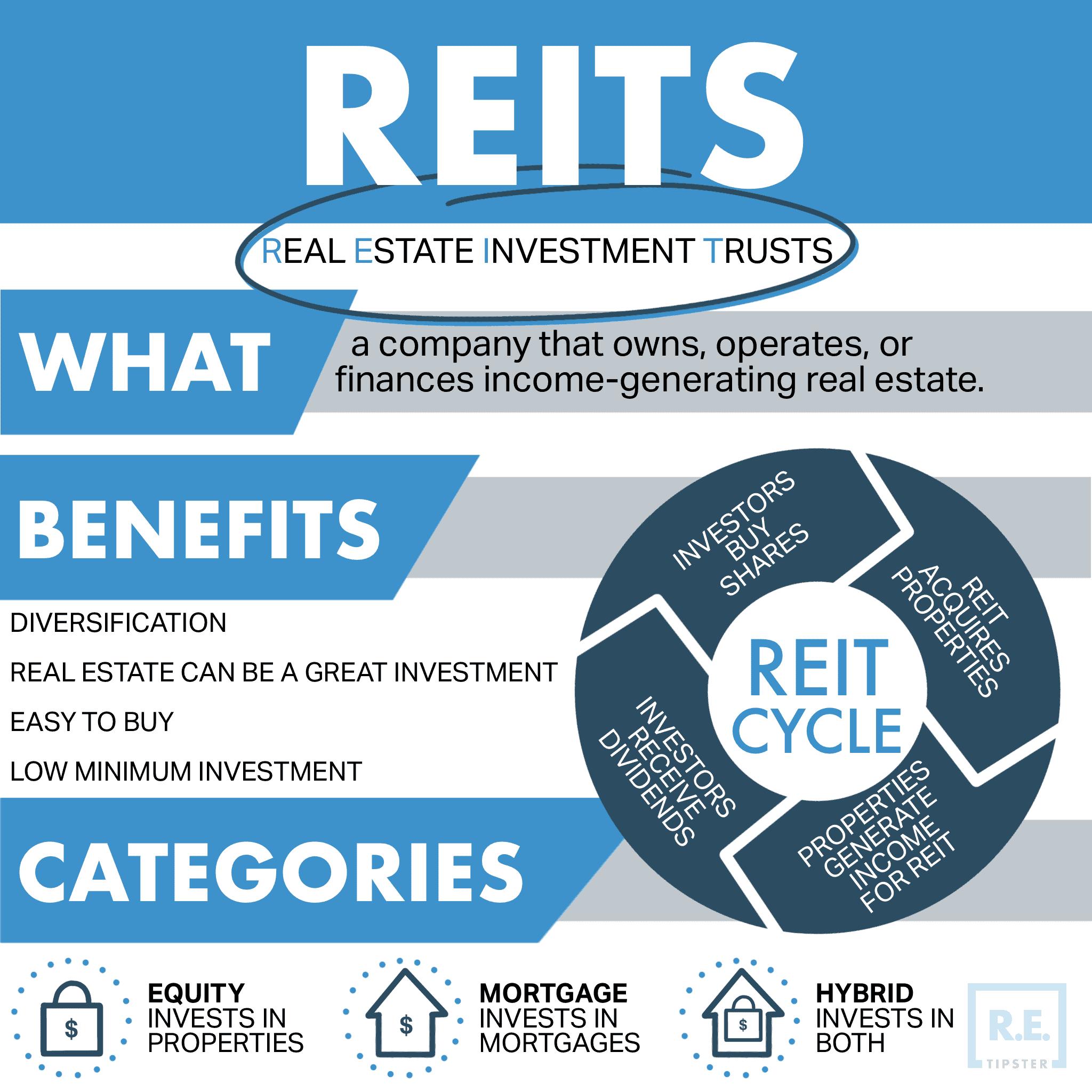 REIT Infographic