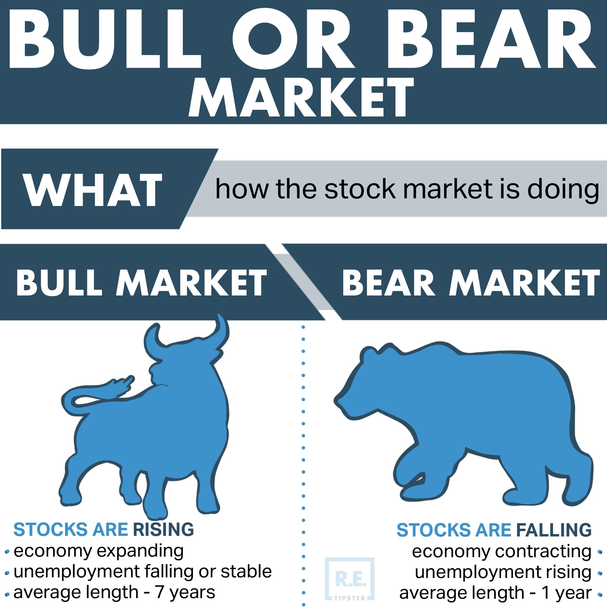 Bull_or_Bear_Market_Infographic
